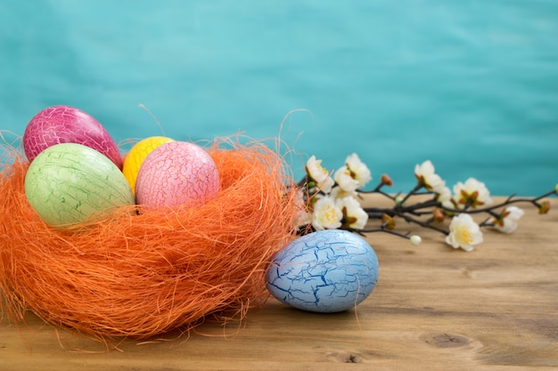 Front view of a easter eggs in orange nest and spring flowers on wood and turquoise background with message space.