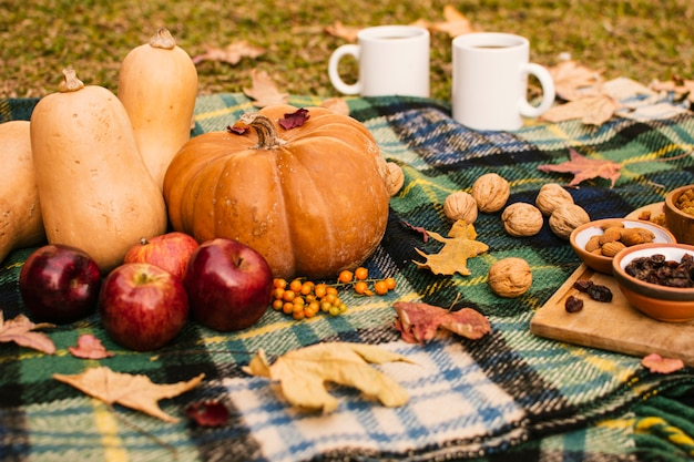 Front view fall season meal on picnic blanket