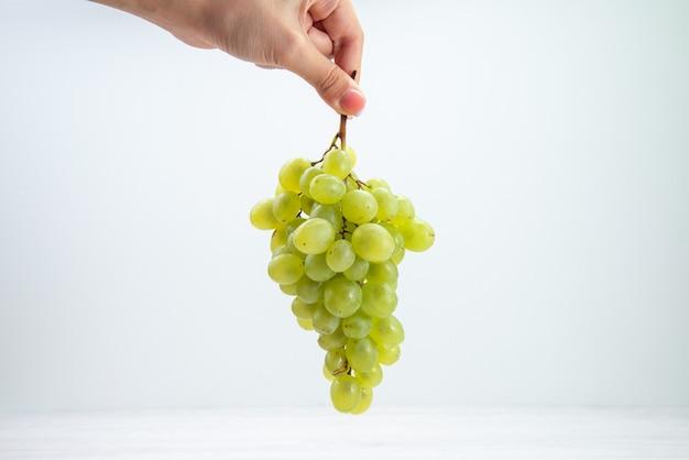 正面図明るい白い表面のフルーツワイン新鮮なまろやかなジュースの女性の手で新鮮な緑のブドウ