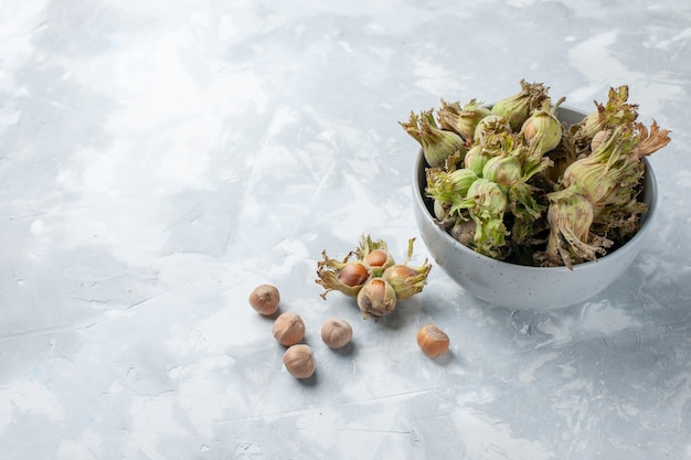 白い机の上の小さな鍋の中の新鮮なヘーゼルナッツの正面図ナッツヘーゼルナッツスナックツリー