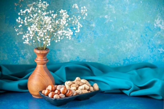 Vista frontale noci fresche arachidi e nocciole su spuntino di colore blu cips noce noce foto albero pianta
