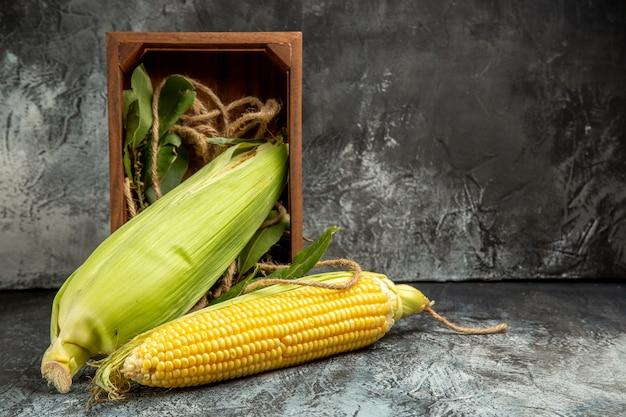 暗い光の背景に新鮮な生のトウモロコシ黄色の植物の正面図