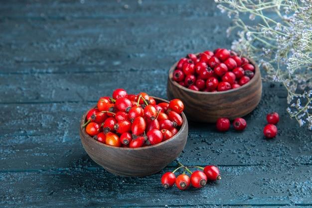 暗い木製の机の上のプレート内の新鮮な赤いベリーの正面図健康ベリー野生色の果物の写真