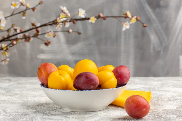 Front view fresh sweet apricots yellow fruits inside plate with plums on the white surface