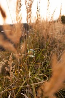 Vista frontale di erba all'aperto con bolla di sapone