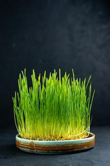 어두운 표면에 전면보기 녹색 휴가 semeni