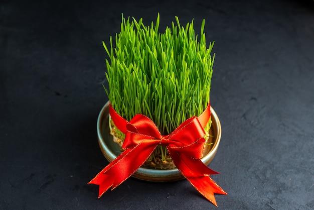 暗い表面に赤い弓と正面図緑の休日のsemeni