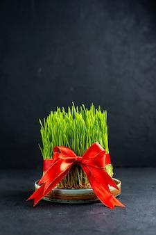 어두운 표면에 붉은 활과 전면보기 녹색 휴가 semeni