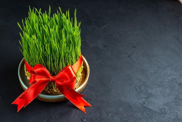 Вид спереди зеленая семени с красным бантом на темной поверхности