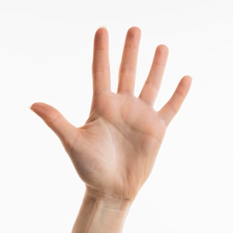 Front view of hand showing palm