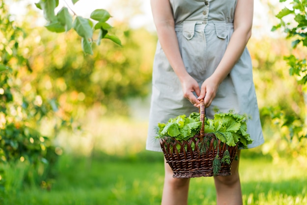 Front view hands holding lettuce basket
