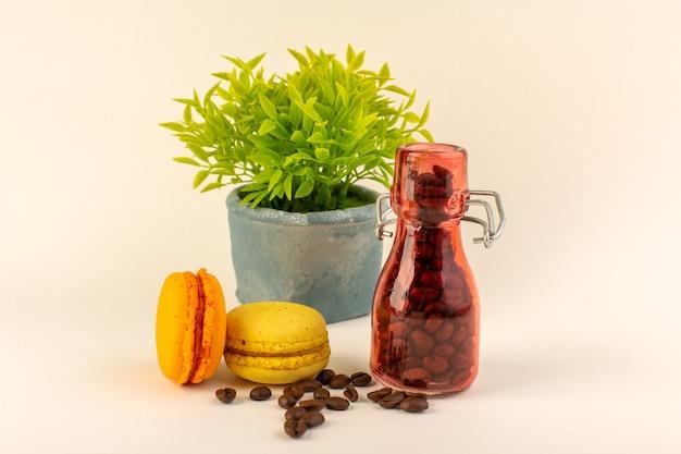 Un barattolo di vista frontale con macarons francesi al caffè e pianta verde sulla superficie rosa