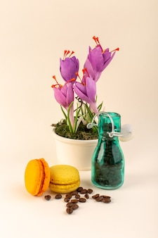A front view jar with coffee french macarons and purple plant on the pink surface