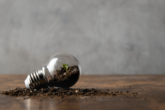 Front view of light bulb with copy space and dirt