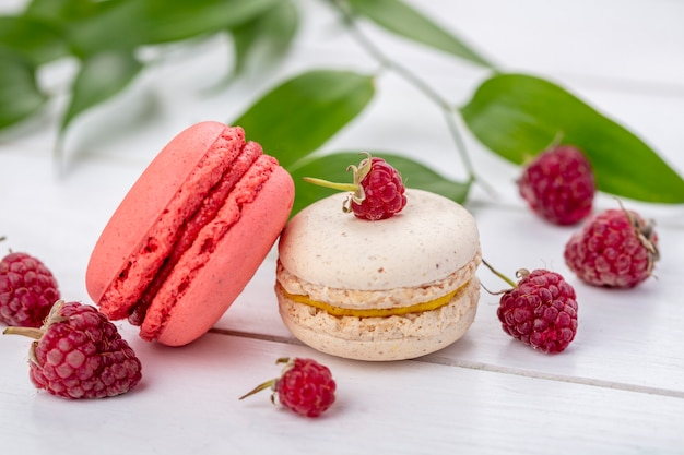 Front view of macarons with raspberries on a white surface