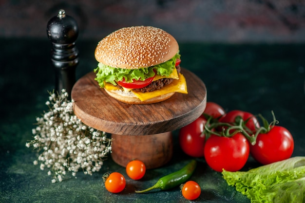 Front view meat hamburger with tomatoes on dark background