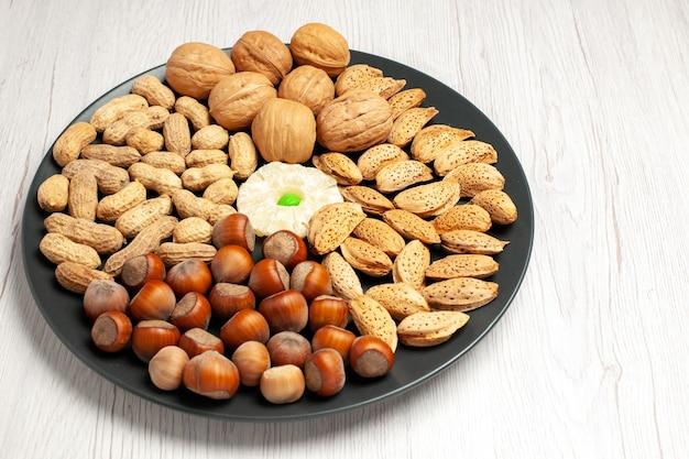 Vista frontale composizione di noci noci fresche arachidi e nocciole all'interno del piatto su scrivania bianca dadi albero snack pianta molte conchiglie