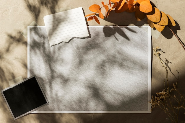 Осенний мудборд, вид спереди с копией пространства