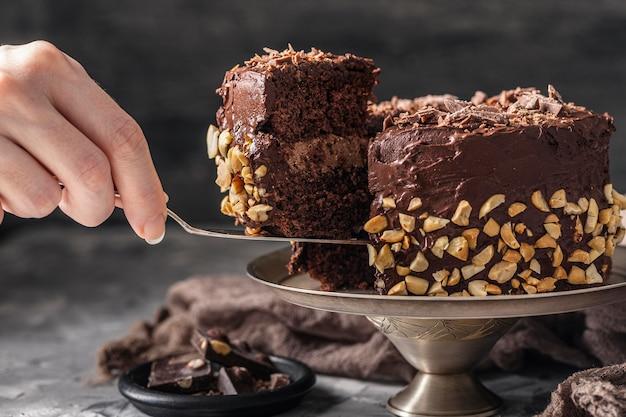 Вид спереди концепции вкусного шоколадного торта