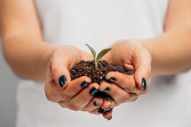 Вид спереди женских рук, держащих почву и маленькое растение
