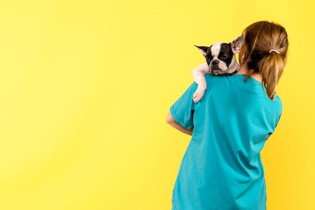 黄色の壁に小さな犬を保持している女性獣医の正面図