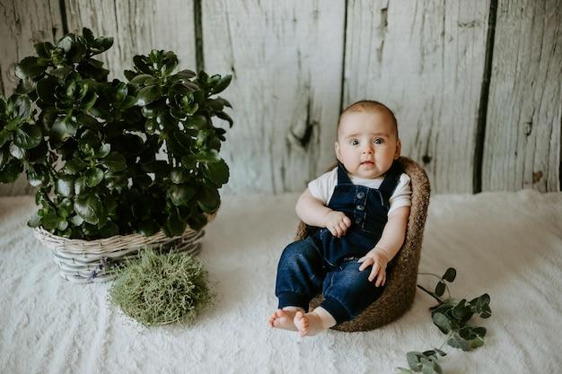 의자에 앉아 있는 작고 귀여운 남자 아이의 전면 모습. 카메라를보고 소년