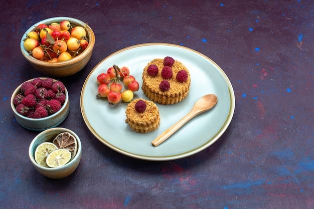 暗い表面に果物とプレートの内側に新鮮なラズベリーと小さな丸いケーキの正面図