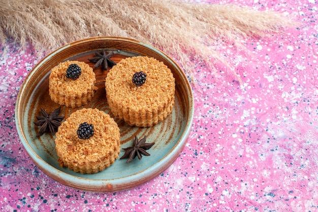 분홍색 표면에 접시 안에 달콤하고 맛있는 작은 맛있는 케이크의 전면보기