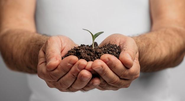 토양 및 식물을 들고 남성 손의 전면보기