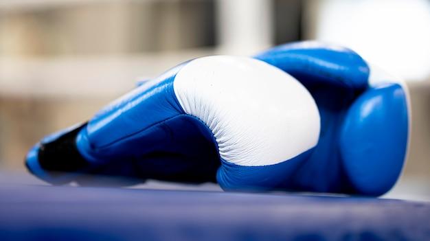 ボクシンググローブのペアの正面図