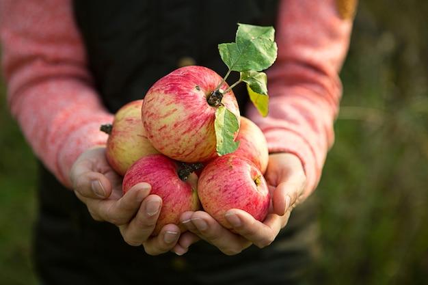 リンゴの束を持っている人の正面図