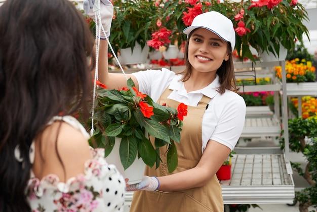 Вид спереди улыбающегося работника женщины в бежевой форме, показывающего горшок с красивыми красными цветами для молодой женщины брюнетки. концепция красивых цветов разного цвета в современной теплице.