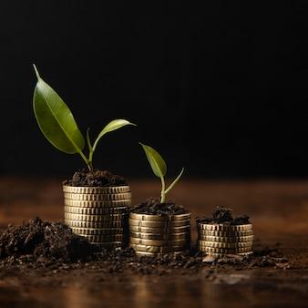 Вид спереди сложенных монет с грязью и растением