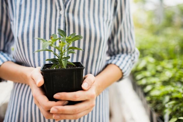 黒い植木鉢を保持している女性の正面図