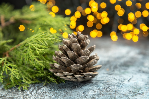 Front view open pinecone pine branches on dark isolated surface xmas lights