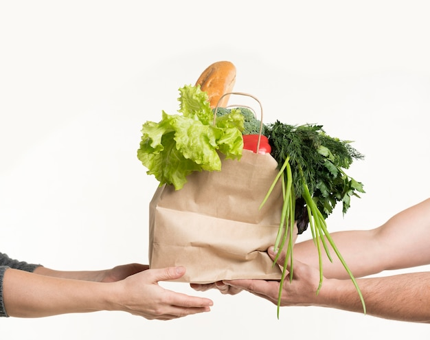 Front view of pair of hands holding grocery bag