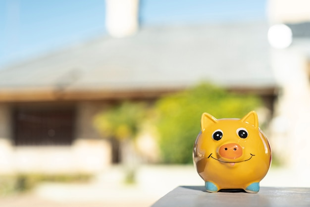 Front view piggy bank on blurred background