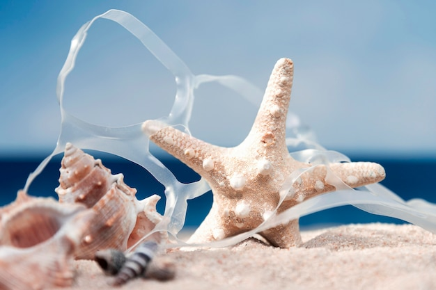 Front view of starfish with plastic on beach