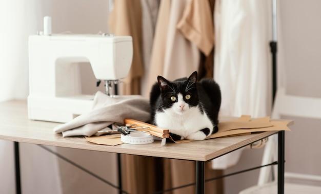 Studio di sartoria vista frontale con gatto e macchina da cucire