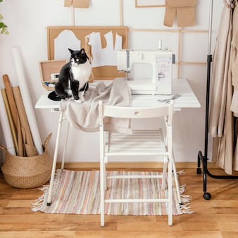 Front view of tailoring studio with sewing machine and cat