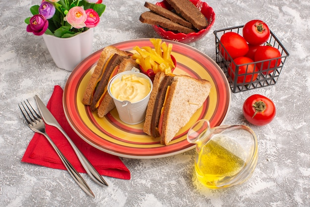 Front view tasty toast sandwiches with cheese ham inside plate with french fries sour cream and oil on white
