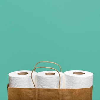 Front view of three toilet paper rolls in paper bag with copy space