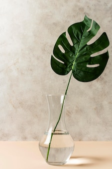 Front view of tropical leaf in vase