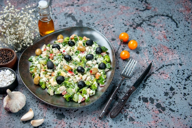 Front view vegetable salad with mayyonaise and olives inside plate on blue surface color health diet dinner dish photo meal