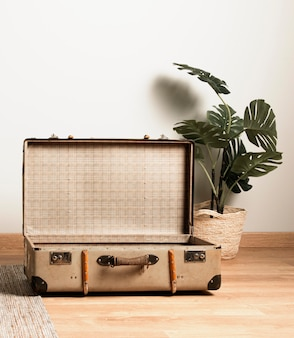Front view vintage suitcase with interior plant