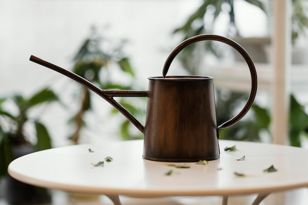 Front view of watering can on table in the apartment with plants