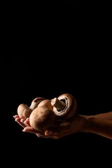 Funghi della holding della donna di vista frontale