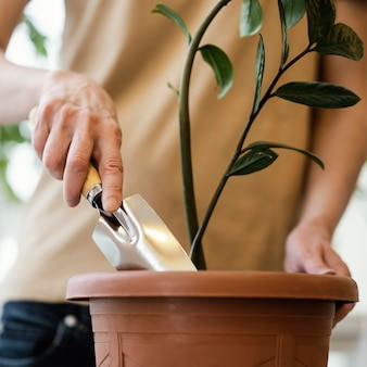 Front view of woman using trowel on indoor plant