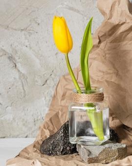 투명 꽃병에 전면보기 노란 튤립