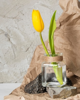 Front view yellow tulip in a transparent vase